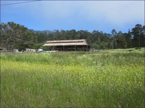 Point Lobos Ranch
