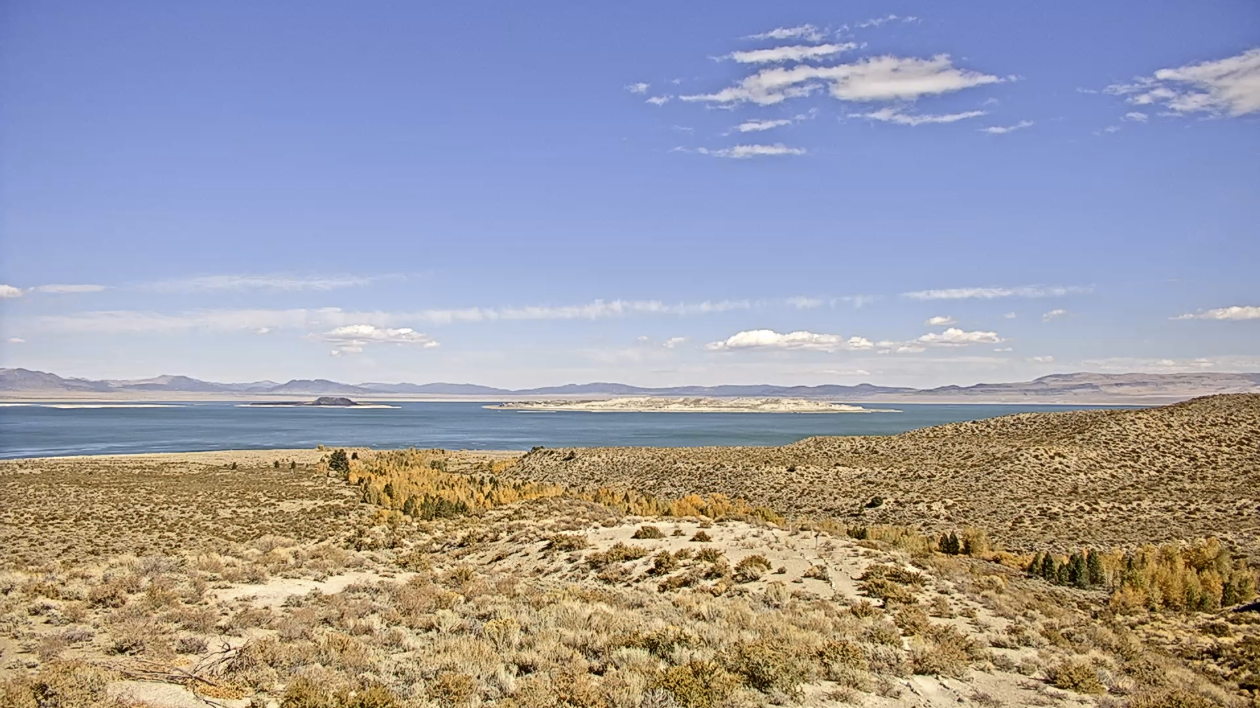 Mono Lake Tufa Live Stream