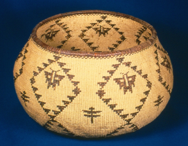 Insect Pattern Basket