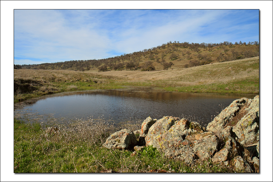 Thumbnail: Pond at Sutter Buttes SP