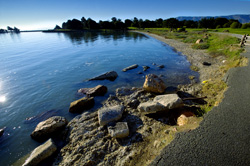 Candlestick Point State Recreation Area