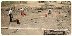 Archaeological Excavations at Los Angeles SHP