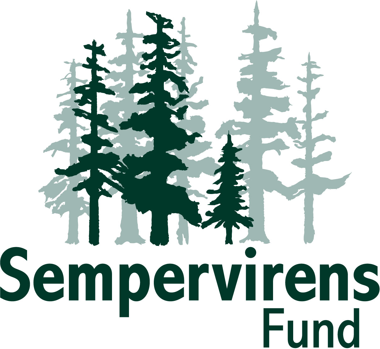 sempervirens fund logo
