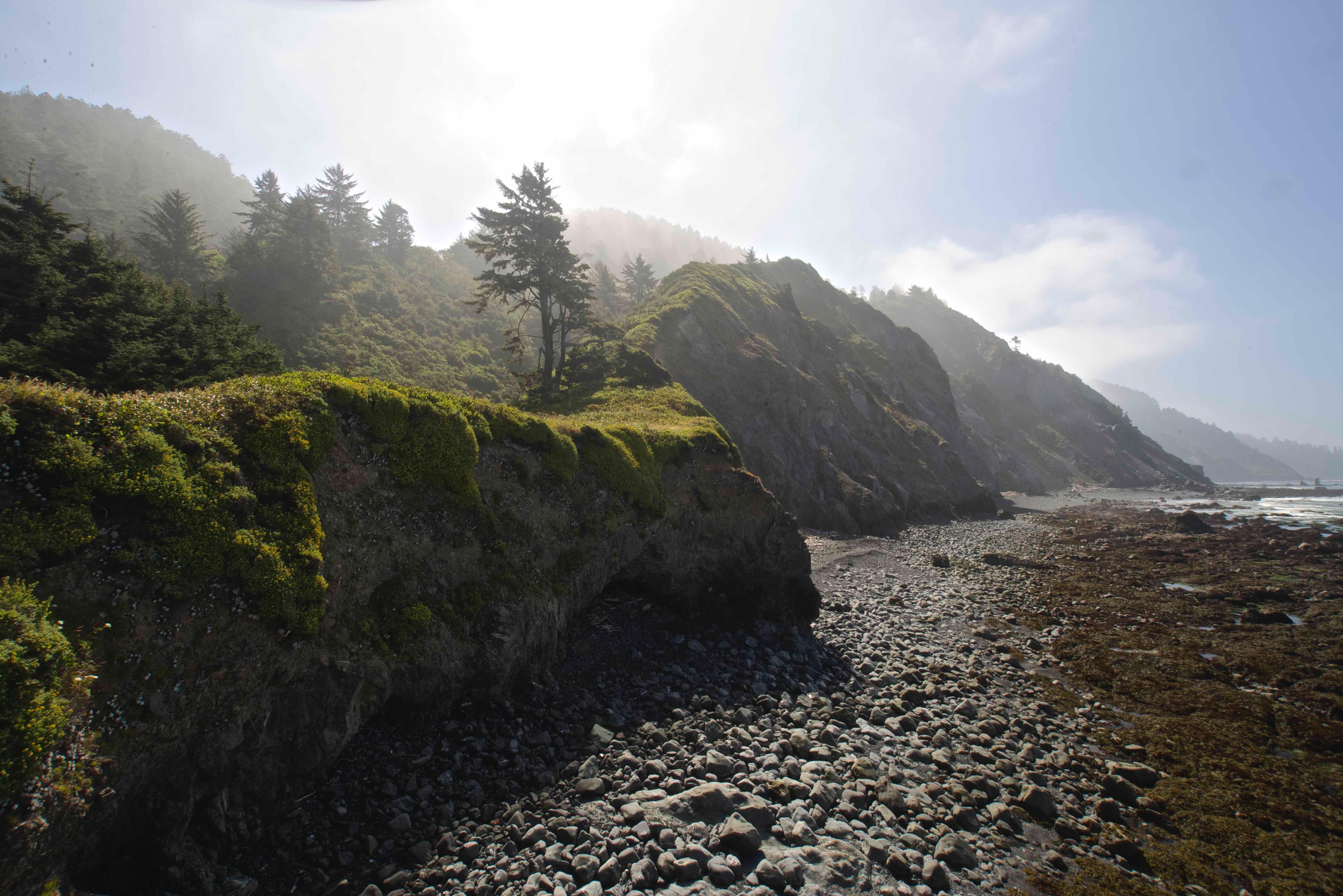 Del Norte Coast Redwoods Sp