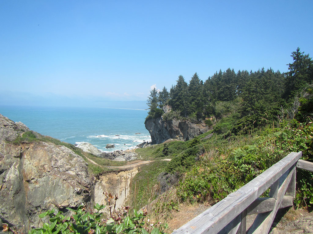 Image from Patrick's Point SP