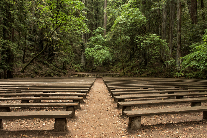 Image from Armstrong Redwoods SNR