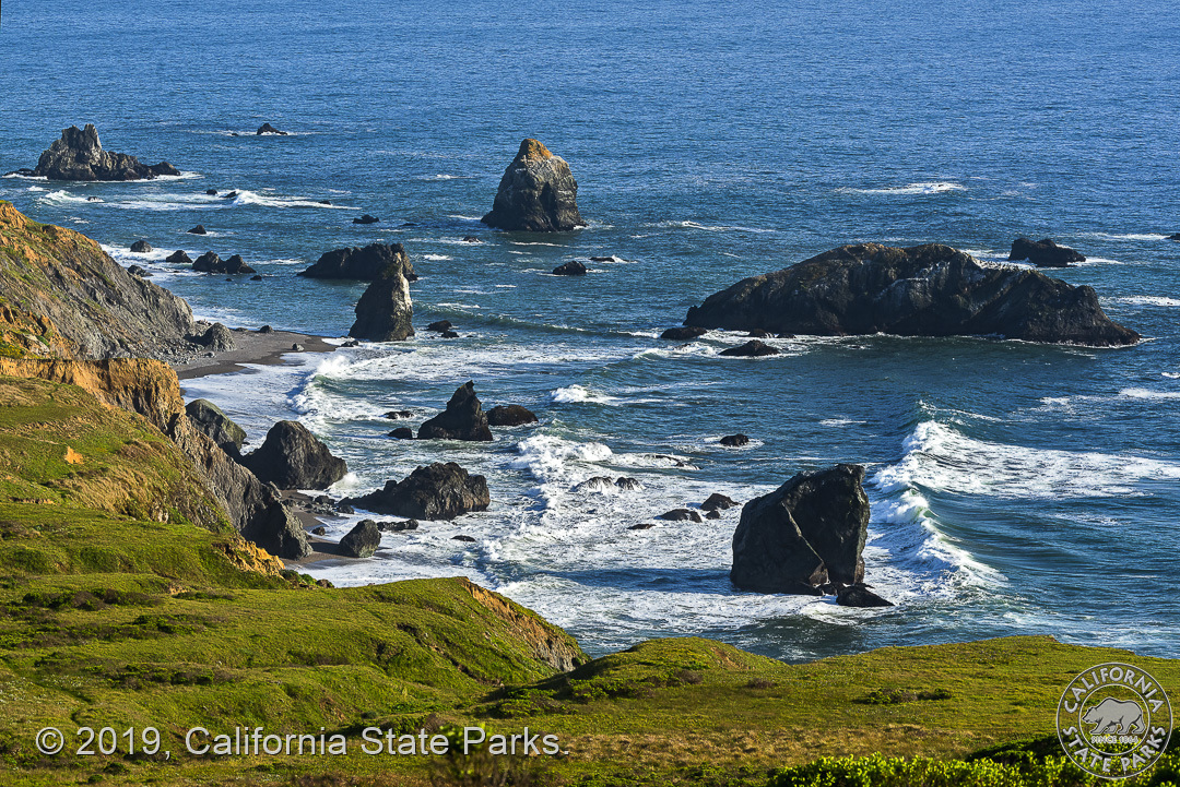 Image from Sonoma Coast State Park