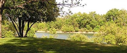 View of Sacramento River at Wiliam B. Ide Adobe SHP