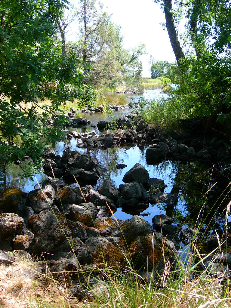 Image from Ahjumawi Lava Springs SP