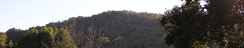 Thumbnail: Mountain and oak woodlands at Olompali SHP
