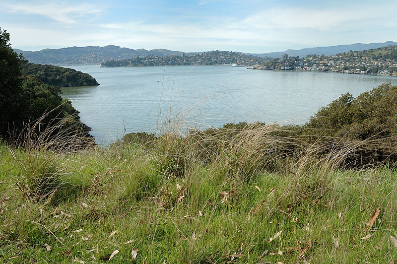 Image from Angel Island SP