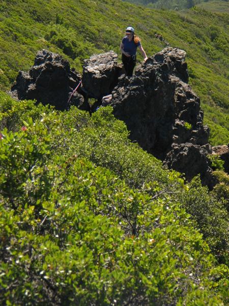 Image from Mount Tamalpais State Park