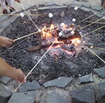 Roasting Marshmallows image