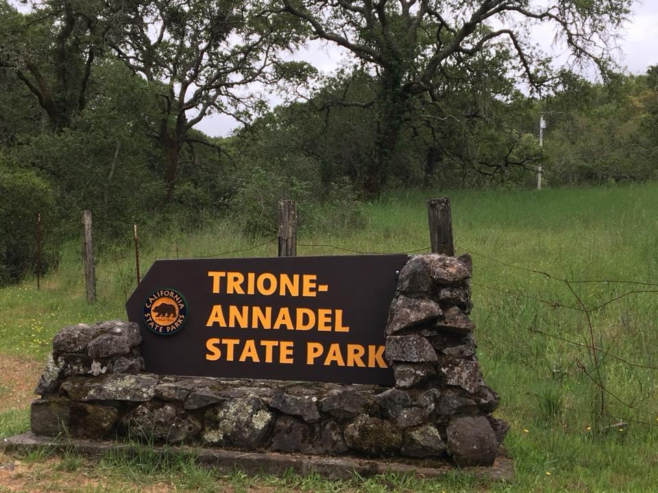 Trione Annadel Sp Image Gallery
