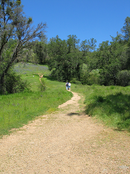 Image from South Yuba River SP