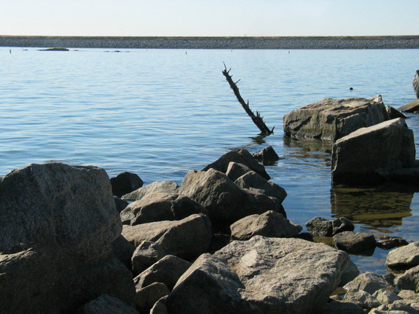Thumbnail: Beals Point.