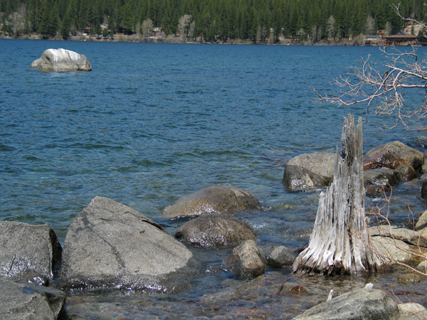 Image from Donner Memorial SP