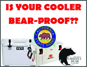 Bear-Proof Cooler image
