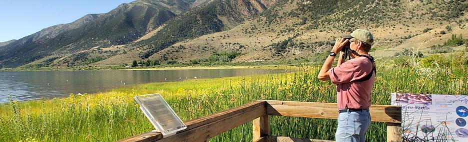 Image from Mono Lake Tufa SNR