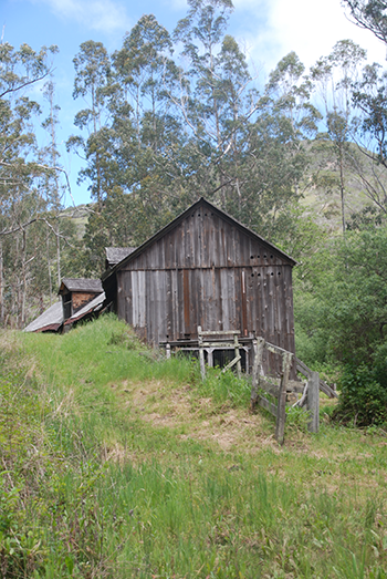 Image from Burleigh H. Murray Ranch