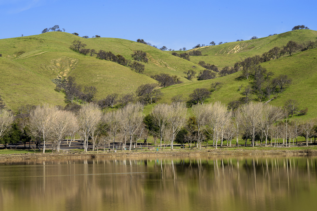 Image from Lake Del Valle SRA