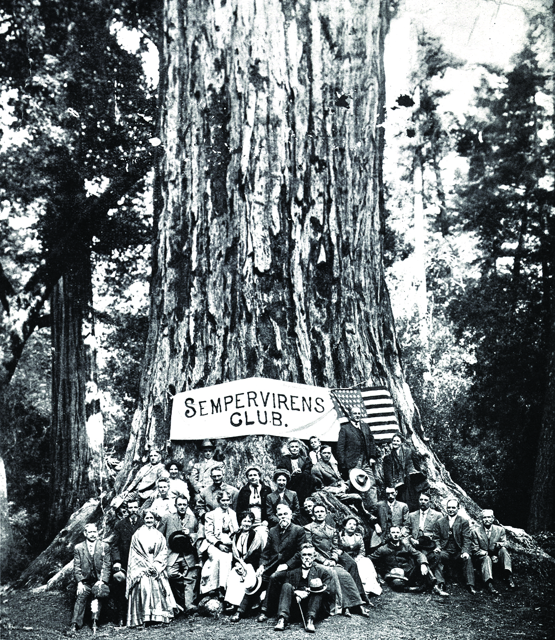 Established in 1902, Big Basin Redwoods is California's oldest state park. In the heart of the Santa Cruz Mountains, its biggest attractions—literally—are its ancient coast redwoods. Photo approx. 1901 (Sempervirens Club) [1086 x 1252]