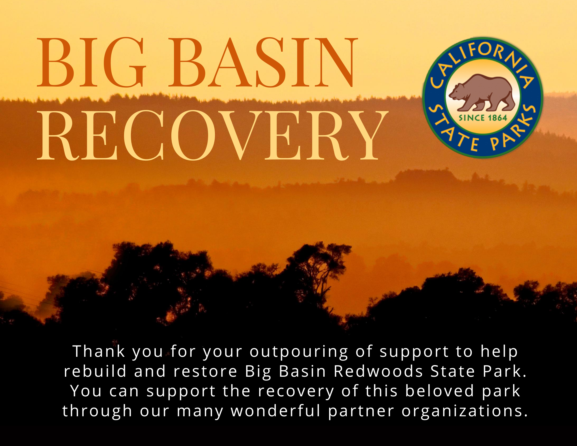 Big Basin Recovery page welcome image with fiery mountain landscape background and white text that reads: Thank you for your outpouring of support to help rebuild and restore Big Basin Redwoods State Park. You can help support the recovery of this beloved park through our many wonderful partner organizations.