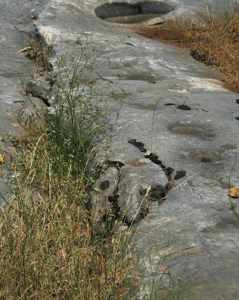 Image from Indian Grinding Rock SHP