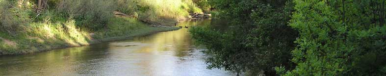Thumbnail: view of the Stanisluas River at Caswell Memorial SP