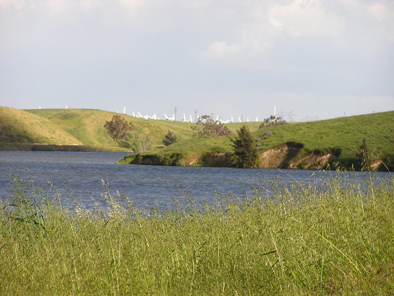 Image from Bethany Reservoir SRA