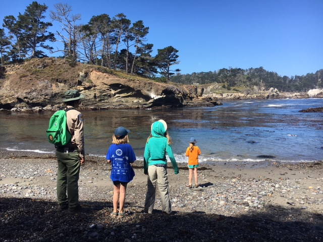 Point Lobos JR