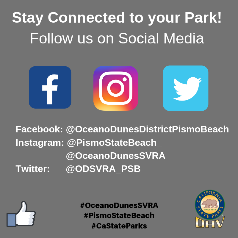 @PismoStateBeach_ is the handle for social media pages