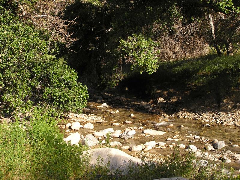 Placerita Canyon SP