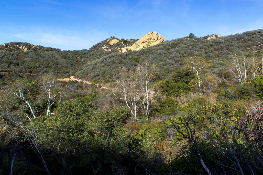 Image from Topanga SP