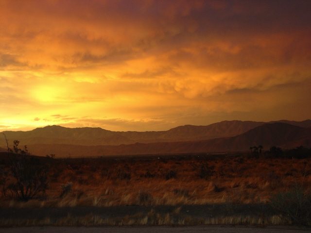 Image from Anza-Borrego Desert SP ®