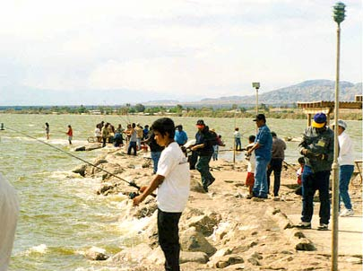 Thumbnail: Salton Sea Fishing