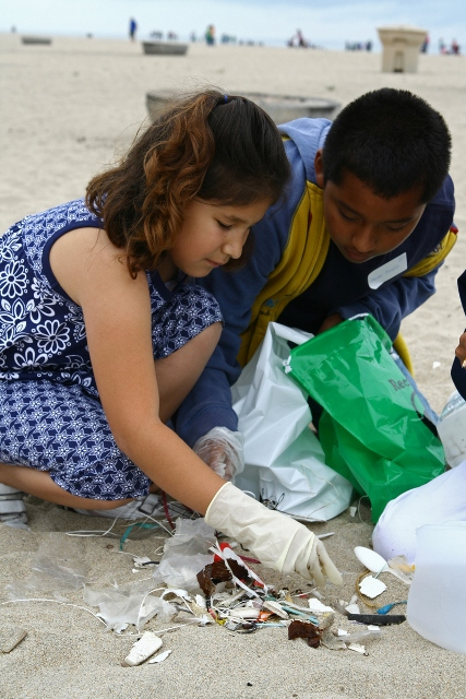 Beach clean up image