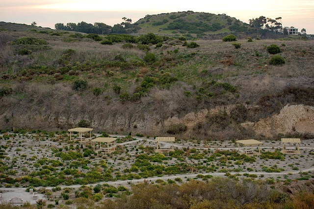 Image from Crystal Cove