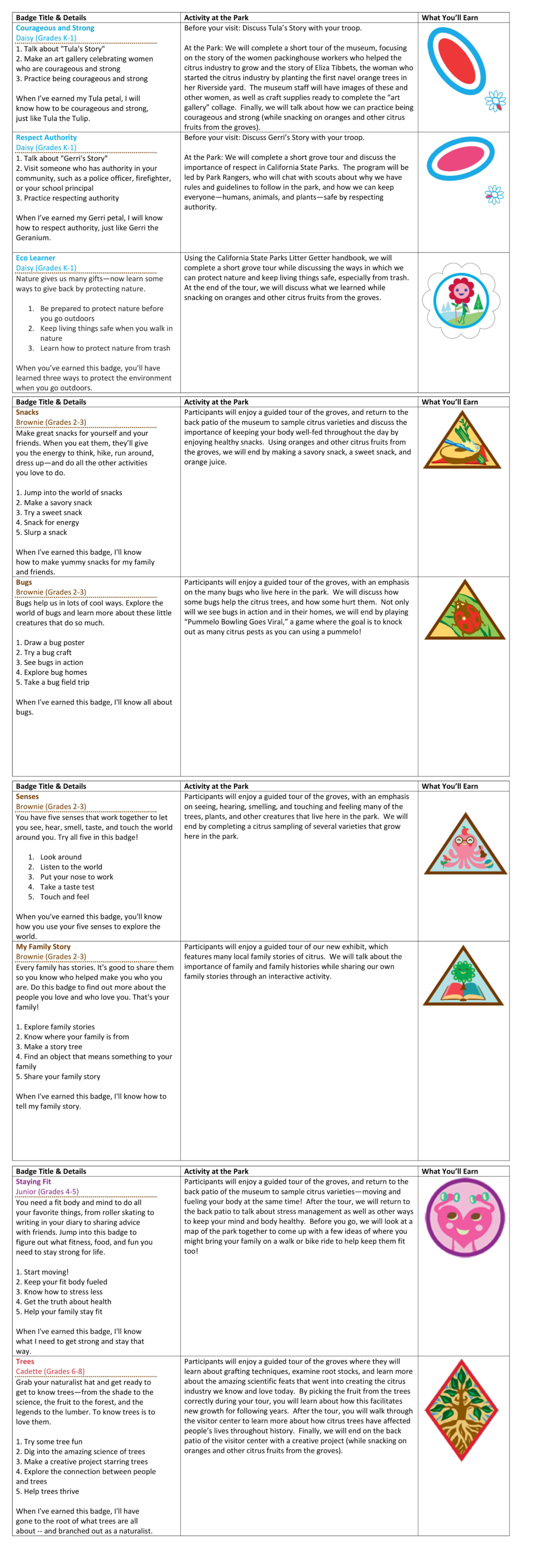 Girl Scout Badge Program