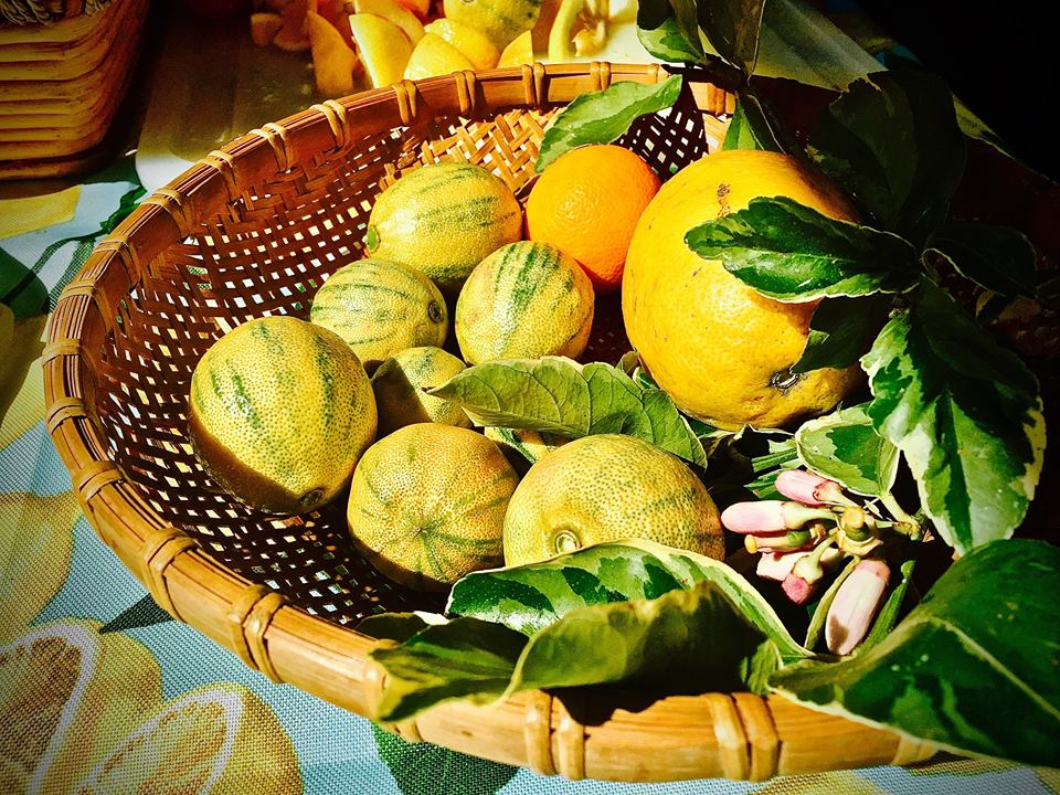 miscfruit
