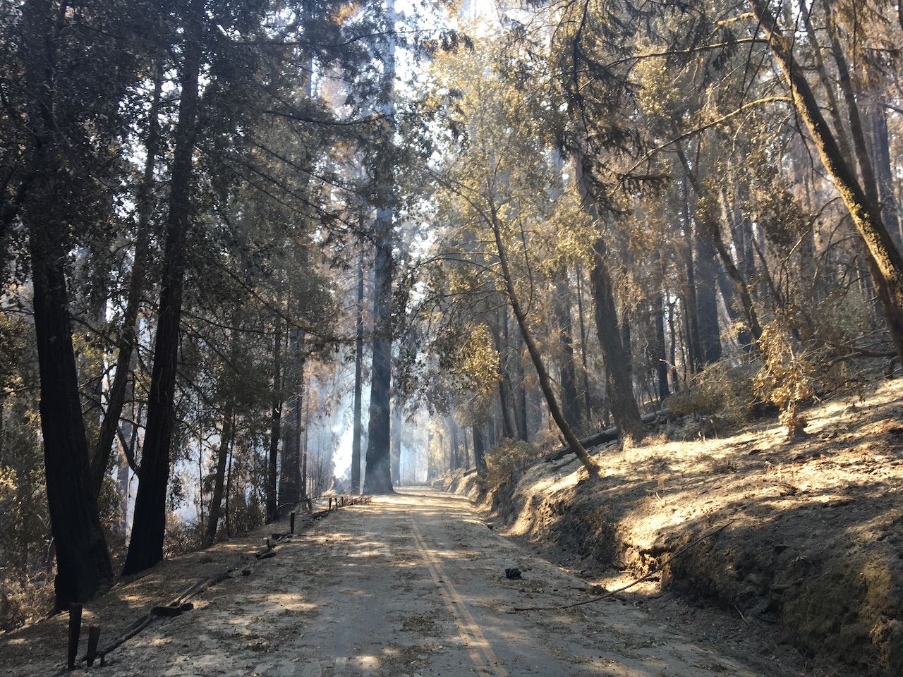 Big Basin Fire Image