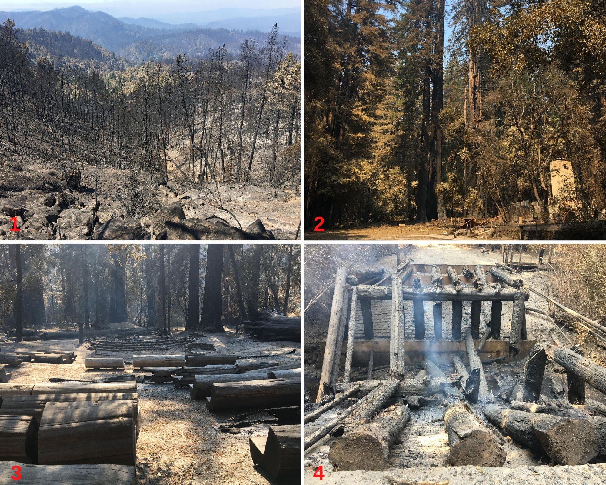 Photo 1: View of burned trees looking northwest from Eagle Repeater into the basin. Photo 2: Remnants of Park Headquarters. Photo 3: Amphitheater. Photo 4: Gazos Bridge at North Escape Road. Photos from California State Parks. For more photos and video, please visit www.parks.ca.gov/incidents.