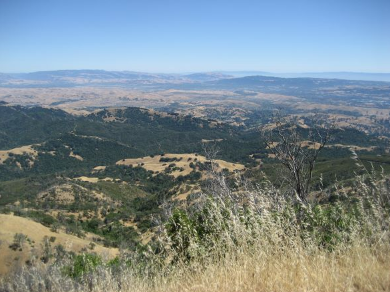 A view from Mount Diablo