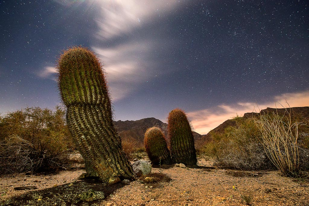 Banner for Anza-Borrego Desert State Park Recognized as an International Dark-Sky Park