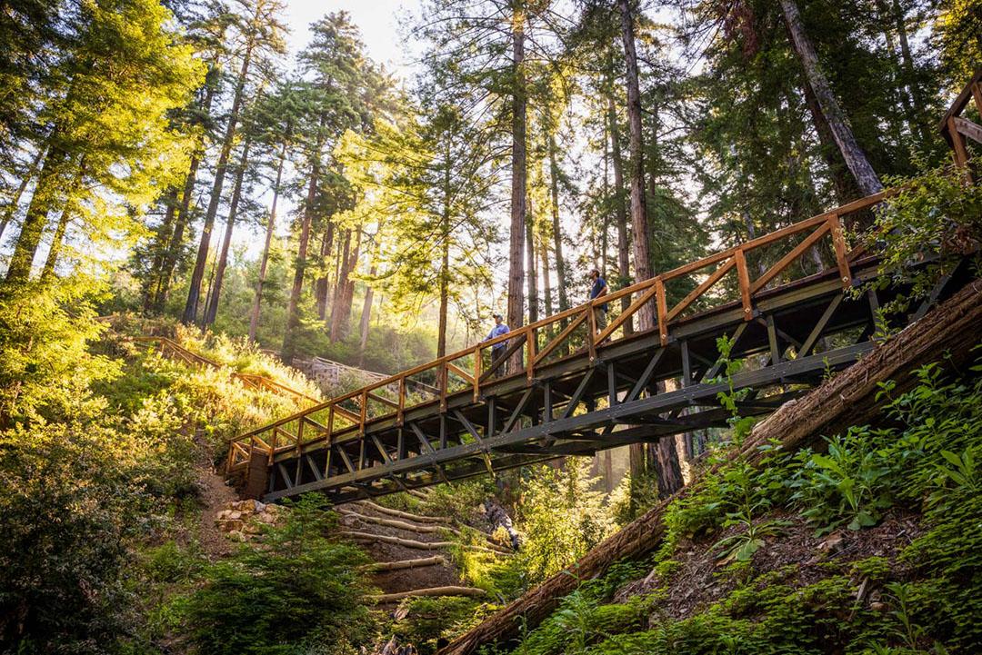 Pfeiffer Falls Tail Bridge